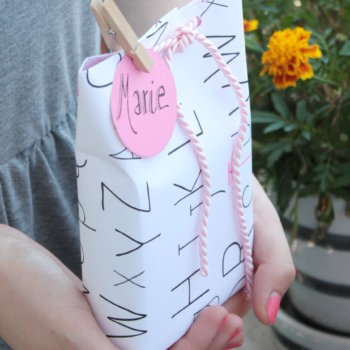 Geschenktüten DIY 5