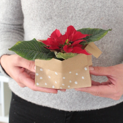 Mitbringsel zu Weihnachten: DIY Weihnachtsstern verpacken