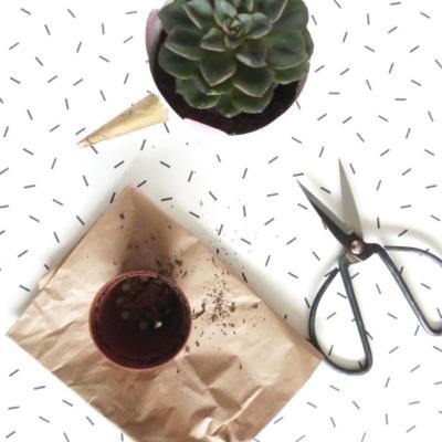 Ausprobiert? Bei Pinterest könnt ihr jetzt eure DIY-Ergebnisse teilen!