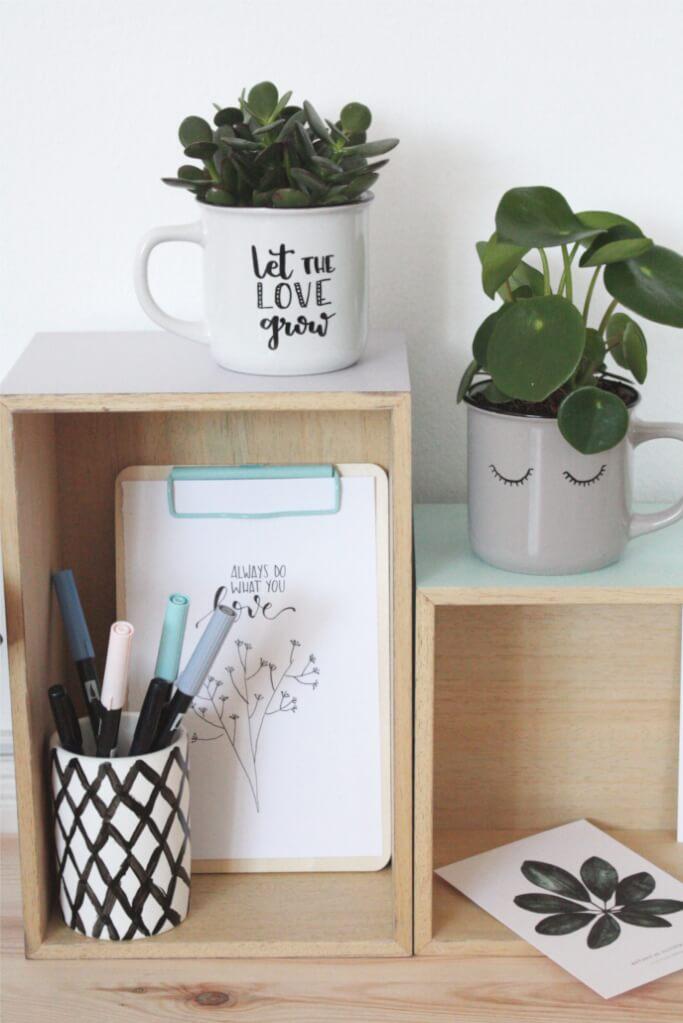 Basteln Mit Tassen sukkulenten in tassen pflanzen diy muenchen basteln